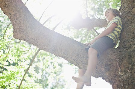 Smiling boy sitting in tree Stock Photo - Premium Royalty-Free, Code: 649-06717300