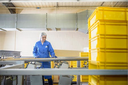 food processing plant - Worker checking production line in factory Stock Photo - Premium Royalty-Free, Code: 649-06717652