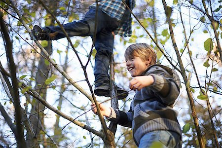 Boys up in tree Stock Photo - Premium Royalty-Free, Code: 649-06812981