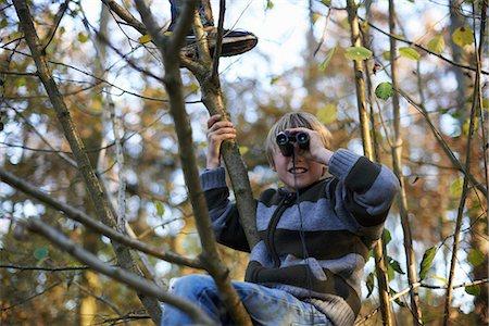 Boys up tree looking through binoculars Stock Photo - Premium Royalty-Free, Code: 649-06812982