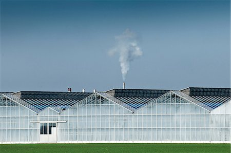 Smoke from large industrial greenhouse Stock Photo - Premium Royalty-Free, Code: 649-06829461