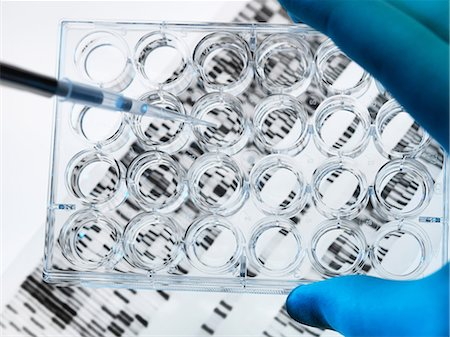 DNA sample being pipetted into multi well plate with DNA gel below Stock Photo - Premium Royalty-Free, Code: 649-06829946