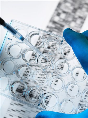 DNA sample being pipetted into multi well plate with DNA gel below Stock Photo - Premium Royalty-Free, Code: 649-06829947