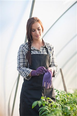 farmhand (female) - Young woman putting on gardening gloves Stock Photo - Premium Royalty-Free, Code: 649-06844248