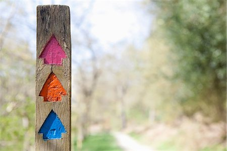Colourful direction arrows in forest Stock Photo - Premium Royalty-Free, Code: 649-06844894