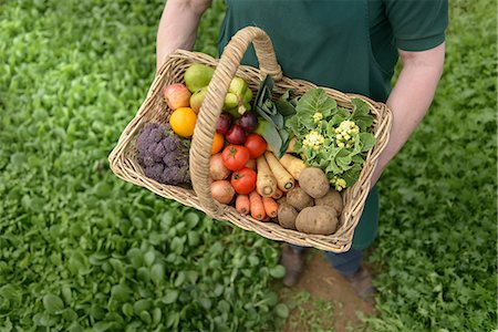 Farmer carrying organic vegetables in basket for delivery, close up Stock Photo - Premium Royalty-Free, Code: 649-06845114