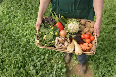 Farmer carrying organic vegetables in box for delivery, close up Stock Photo - Premium Royalty-Free, Code: 649-06845113