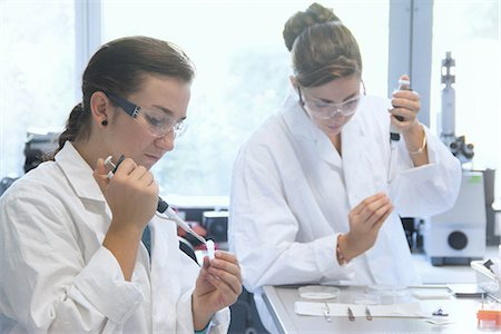 Biology students working with pipettes in lab Stock Photo - Premium Royalty-Free, Code: 649-07064906