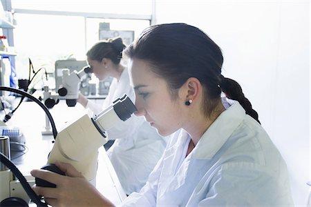 Biology students using microscopes Stock Photo - Premium Royalty-Free, Code: 649-07064912