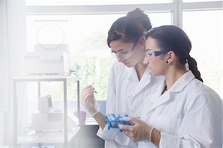 Biology students working in lab Stock Photo - Premium Royalty-Free, Code: 649-07064913