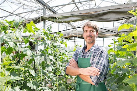 Portrait of organic farmer next to cucumber plants in polytunnel Stock Photo - Premium Royalty-Free, Code: 649-07063408