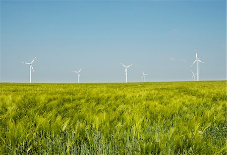 Group of wind turbines, Selfkant, Germany Stock Photo - Premium Royalty-Free, Code: 649-07063471