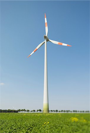 Wind turbine, Selfkant, Germany Stock Photo - Premium Royalty-Free, Code: 649-07063482