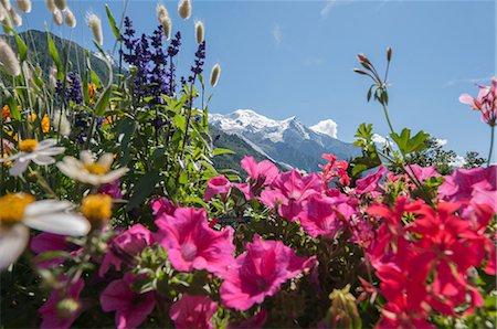 france - Mont Blanc, Chamonix, France Stock Photo - Premium Royalty-Free, Code: 649-07118181