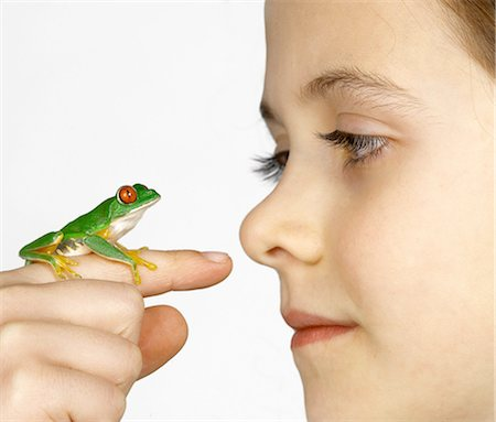Girl with a red-eyed tree frog on her finger Stock Photo - Premium Royalty-Free, Code: 649-07119017
