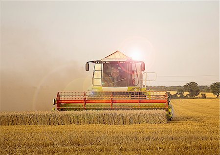 Combine harvester in field, Devon, England, UK Stock Photo - Premium Royalty-Free, Code: 649-07119686