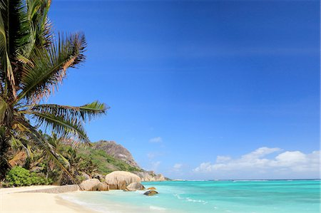 palm - Beach and palm trees, La Digue, Seychelles Stock Photo - Premium Royalty-Free, Code: 649-07239049