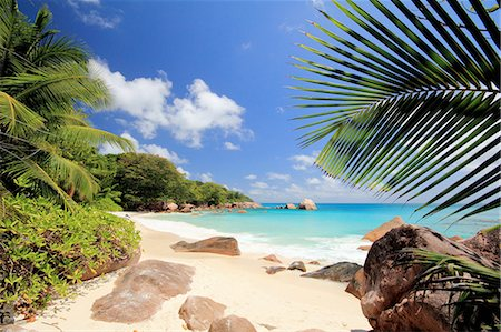 seychelles - Secluded beach, Praslin Island, Seychelles Stock Photo - Premium Royalty-Free, Code: 649-07239209