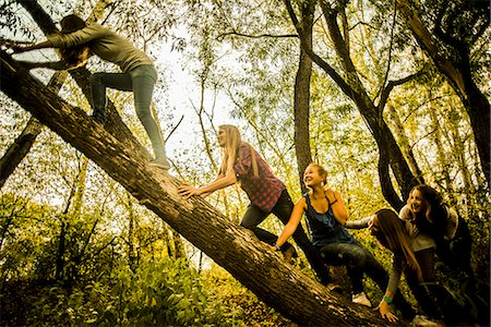Five young women climbing tree in woods Stock Photo - Premium Royalty-Free, Code: 649-07239411