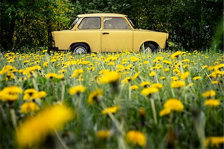 Vintage yellow car in field Stock Photo - Premium Royalty-Free, Code: 649-07279717