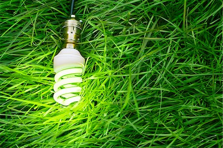 Still life of energy saving lightbulb on grass Foto de stock - Royalty Free Premium, Número: 649-07280374