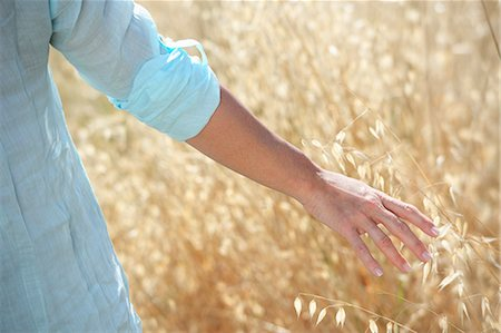 Cropped image of woman's hand in corn field Stock Photo - Premium Royalty-Free, Code: 649-07436503