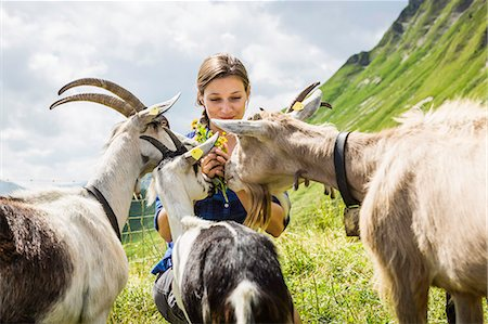 farming (raising livestock) - Mid adult woman with goats, Tyrol, Austria Stock Photo - Premium Royalty-Free, Code: 649-07437552