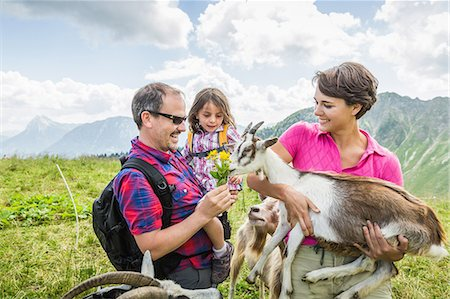 Parents and daughter feeding goats, Tyrol, Austria Stock Photo - Premium Royalty-Free, Code: 649-07437722