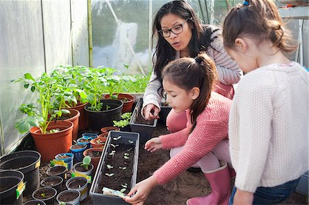 dirt - Mother and daughter planting seedlings Stock Photo - Premium Royalty-Free, Code: 649-07437860