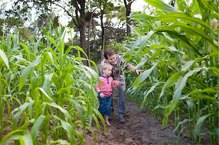 Farmer and son in field of crops Stock Photo - Premium Royalty-Free, Code: 649-07437981
