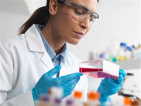 science & technology - Cell biologist holding a flask containing stem cells, cultivated in red growth medium, to investigate diseases Stock Photo - Premium Royalty-Free, Code: 649-07585089