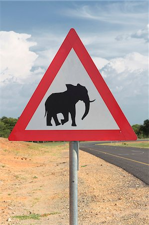 sign - Elephant warning sign, Kasane, Chobe National Park, Botswana, Africa Stock Photo - Premium Royalty-Free, Code: 649-07596645