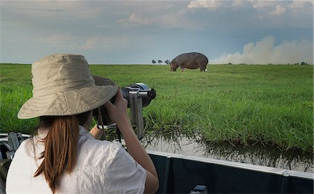 Woman photographing Hippopotamus from safari truck, Kasane, Chobe National Park, Botswana, Africa Stock Photo - Premium Royalty-Free, Code: 649-07596648