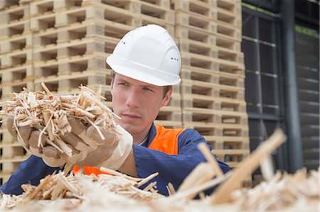 Young man with handful of wood shaving in timber yard Stock Photo - Premium Royalty-Free, Code: 649-07648212
