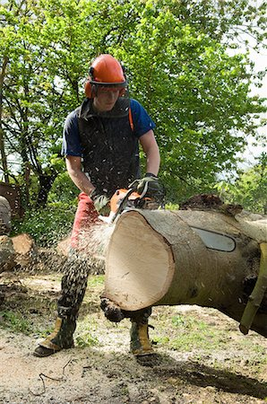 Young male tree surgeon using chainsaw on tree trunk Stock Photo - Premium Royalty-Free, Code: 649-07648462