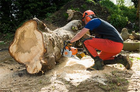Young male tree surgeon kneeling whilst using chainsaw Stock Photo - Premium Royalty-Free, Code: 649-07648463