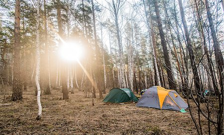 Two pitched tents in forest clearing Stock Photo - Premium Royalty-Free, Code: 649-07736821