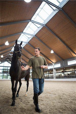 Male stablehand leading horse in indoor paddock Stock Photo - Premium Royalty-Free, Code: 649-07761210