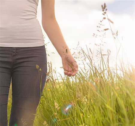 Young woman running hand through long grass in meadow under bright sunshine, close up Stock Photo - Premium Royalty-Free, Code: 649-07804390