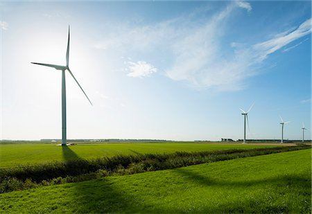 Row of wind turbines in front of sunrise in field landscape, Rilland, Zeeland, the Netherlands Stock Photo - Premium Royalty-Free, Code: 649-07803369