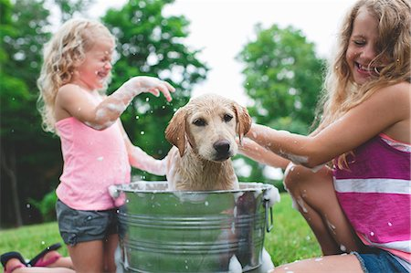 Labrador Retriever puppy in bucket shaking bath water at sisters Stock Photo - Premium Royalty-Free, Code: 649-07803501