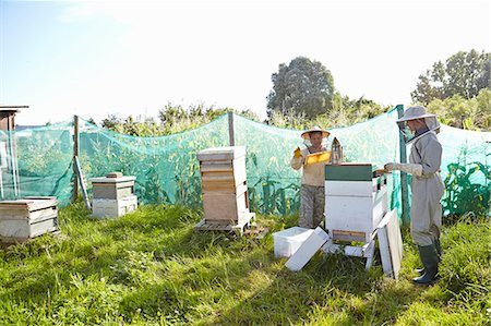 Two female beekeepers working on city allotment Stock Photo - Premium Royalty-Free, Code: 649-07803949