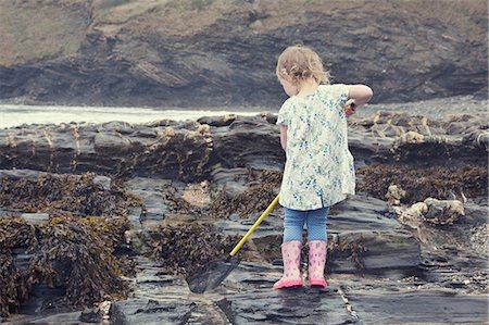 Female toddler fishing in rock pools on beach, Crackington Haven, Cornwall, UK Stock Photo - Premium Royalty-Free, Code: 649-08060363