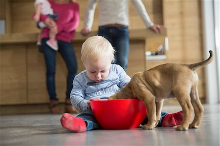 dog and woman and love - Male toddler watching puppy feeding from bowl in dining room Stock Photo - Premium Royalty-Free, Code: 649-08060404