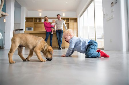 Male toddler playing with puppy on dining room floor Stock Photo - Premium Royalty-Free, Code: 649-08060405