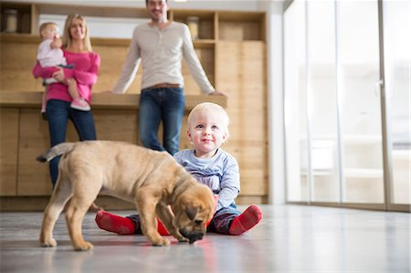 Family watching male toddler with puppy on dining room floor Stock Photo - Premium Royalty-Free, Code: 649-08060403