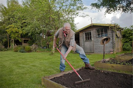 dirt - Senior man, raking soil in garden Stock Photo - Premium Royalty-Free, Code: 649-08086156