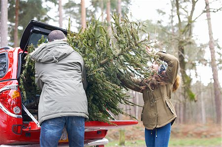 Young couple lifting Christmas tree into car boot Stock Photo - Premium Royalty-Free, Code: 649-08086301