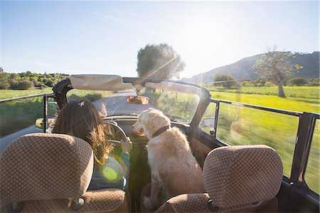 road trip - Mature woman and dog, in convertible car, rear view Stock Photo - Premium Royalty-Free, Code: 649-08125541