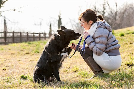 Mid adult woman training her dog to hold up paw in field Stock Photo - Premium Royalty-Free, Code: 649-08125927